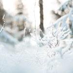 Ilmastotavoitteista jäsenmaita sitovia