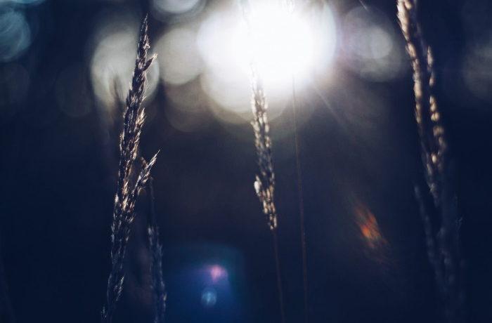 Ilmasto, kuva Reetta Virtanen