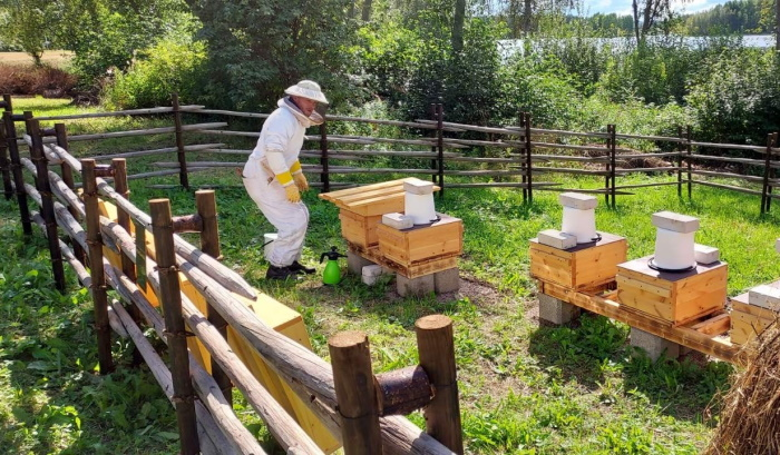 Mehiläistarhaaja