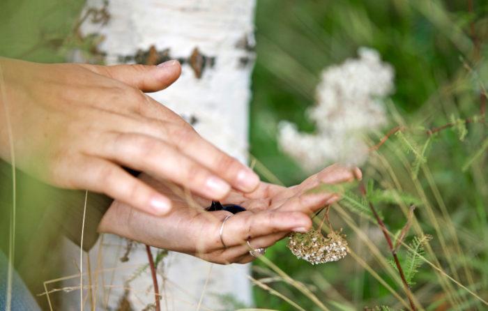Innomost Oy ottaa koivukuoresta talteen kallisarvoisia ainesosia. Kosmetiikan lisäksi niitä voi soveltaa esimerkiksi pintakäsittelyihin.